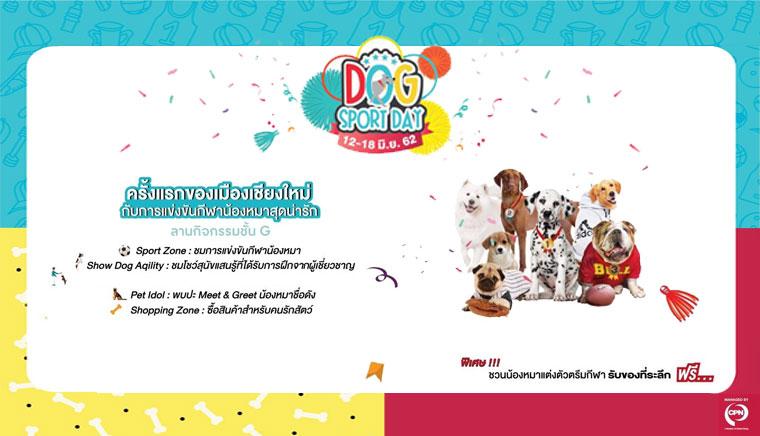 Dog Sport Day