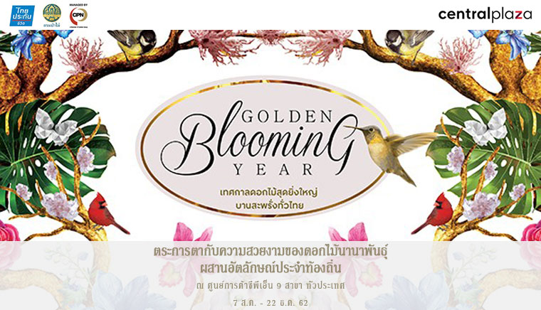 Golden Blooming Year Chiangmai Flora: The Oasis of Chiangmai
