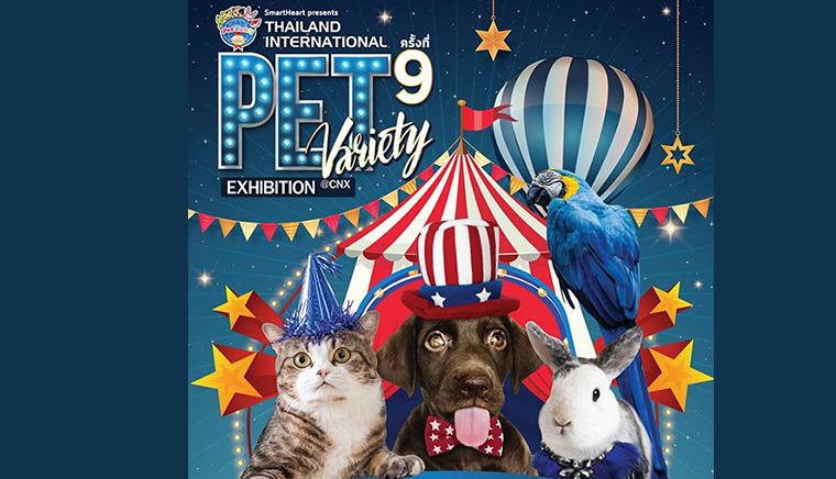 SmartHeart  Pet Variety Exhibition ครั้งที่ 9 @CNX ตอน สี่ขาพาช้อป