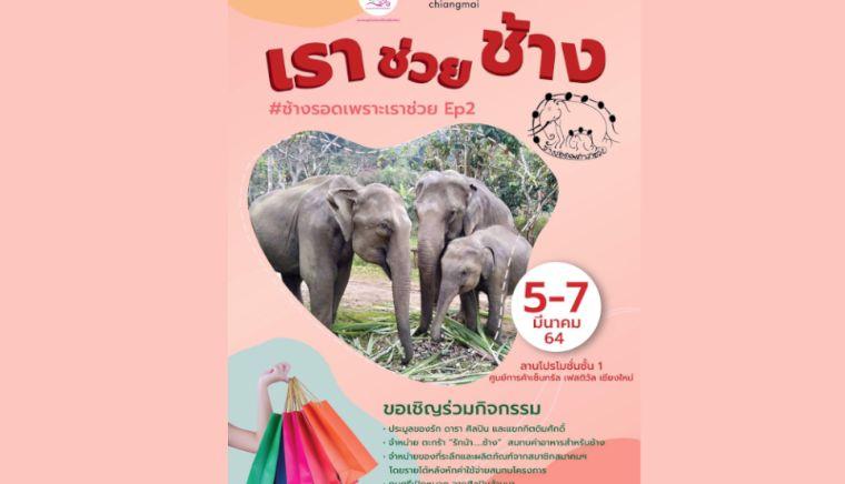 เราช่วยช้าง ช้างรอดเพราะเราช่วย ep2