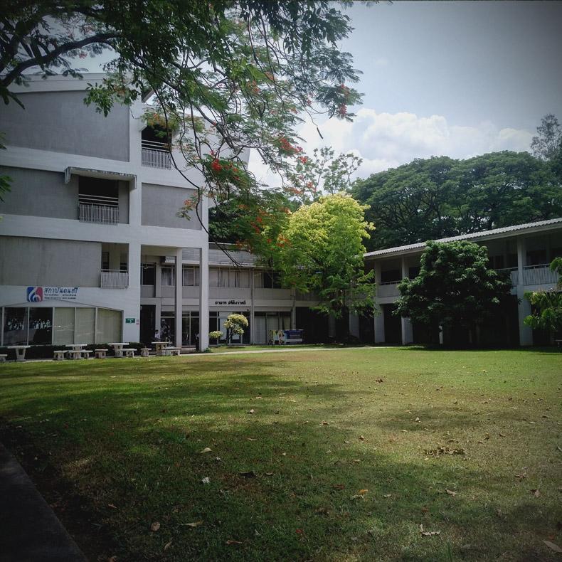 วิทยาลัยดุริยศิลป์ (มหาวิทยาลัยพายัพ)